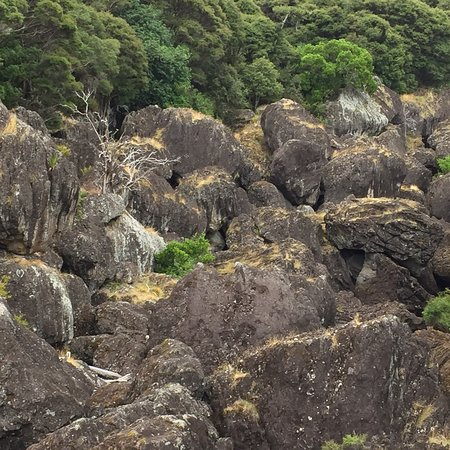 Wairere Boulders : photo4.jpg