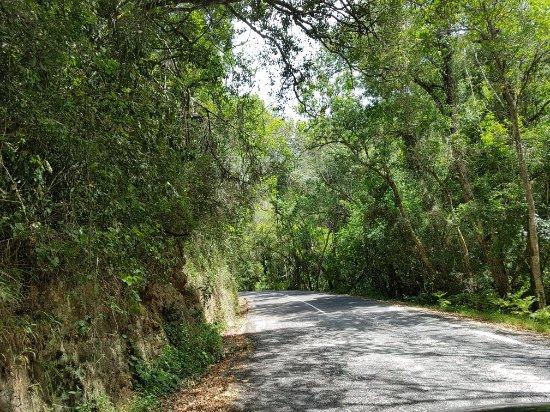 Wilderness, Sudáfrica: 20180117_111131_large.jpg