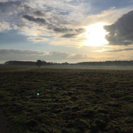 Ginkelse Heide: photo2.jpg