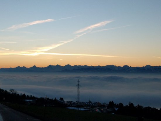Lac de Neuchâtel : IMG_20160125_080251_large.jpg