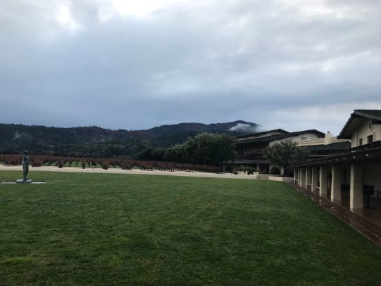 Robert Mondavi Winery: In the courtyard area