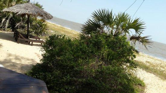 Saadani National Park 사진