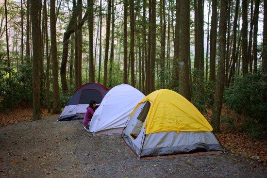 Marion, VA: Our campsite