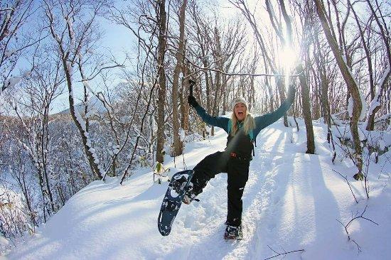 Niseko Snowshoe Tours