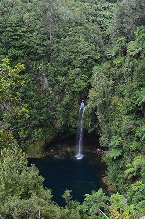 Tauranga, Nuova Zelanda: Vista desde el comienzo del track