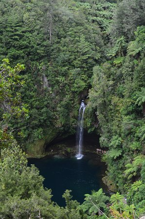Tauranga, Nowa Zelandia: Vista desde el comienzo del track