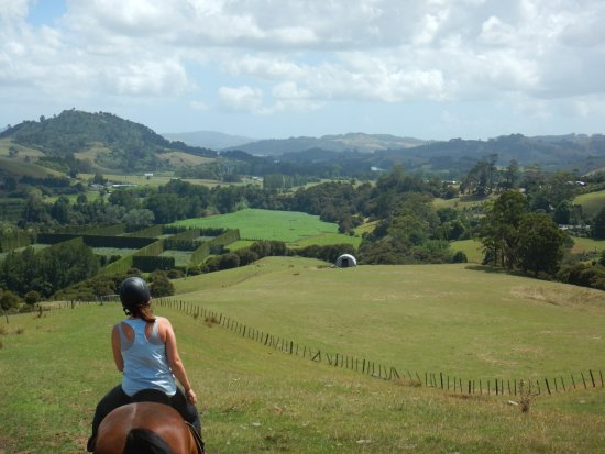 Coromandel Peninsula, New Zealand: View from the top