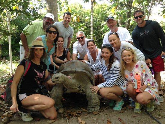 North Sound, Virgin Gorda: A tortoise working the camera!