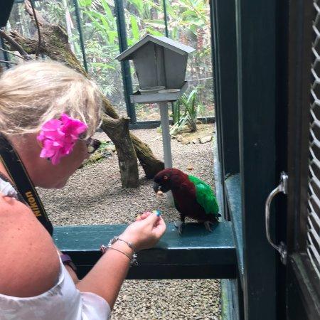 Kula Wild Adventure Park: photo1.jpg