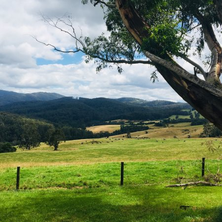Neerim South, Australia: Little Charli's Lookout