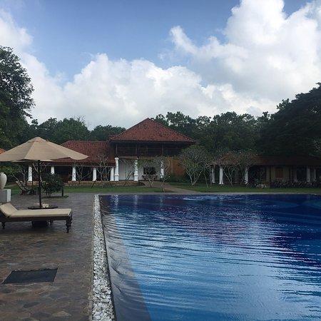 Thirappane, Sri Lanka: photo4.jpg