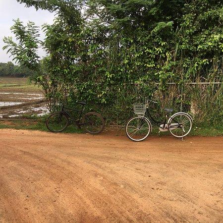Thirappane, Sri Lanka: photo6.jpg