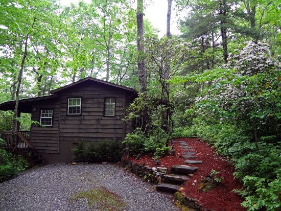 Lake Toxaway, NC: Fox Hole Cabin, 1 queen bedroom, 1 double sleeper sofa in living room