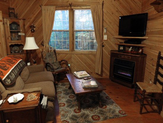 Lake Toxaway, Karolina Północna: Squirrel Nest Cabin Living Room