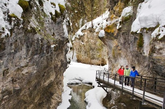 Johnston Canyon Icewalk (marche...