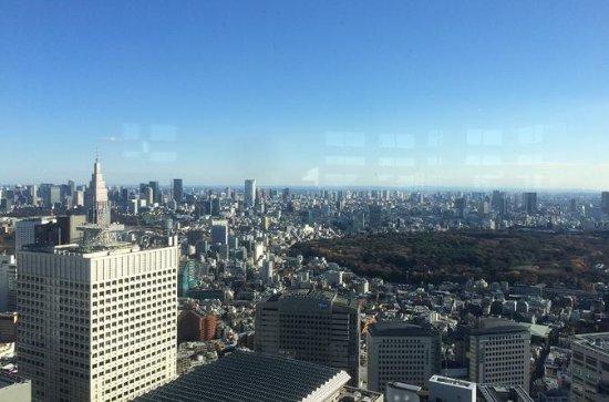 Tokyo City Tour: Private Chauffeur...