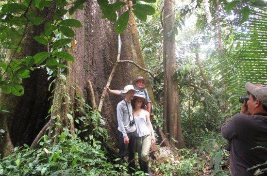 5-Day Wildlife Tour at Tamshiyacu...