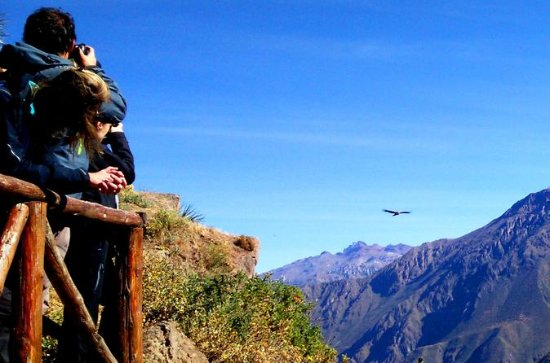Colca Canyon Full day tour, All...