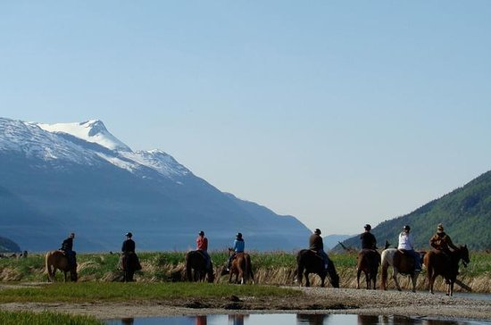 Chilkoot Horseback Adventure