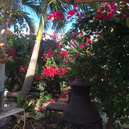 Havana Cafe of the Everglades : photo0.jpg