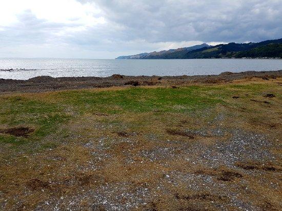 Tapu, New Zealand: 20180113_171500_large.jpg