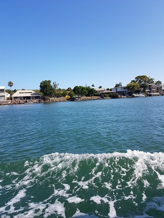 The Noosa Ferry Cruise Company: 20180118_151335_large.jpg