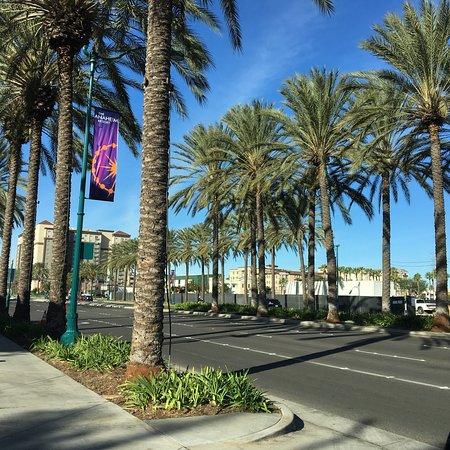 The Comfort Inn & Suites Anaheim, Disneyland Resort: Out front of the Comfort Inn & Suites during December
