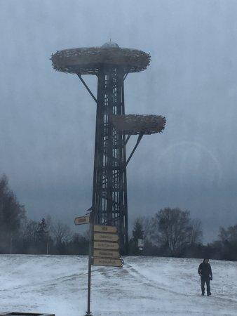 Rouge, Estonia: смотровые площадки-гнезда