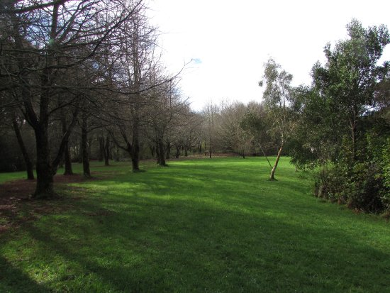 Te Popo Gardens: Some of the open space.