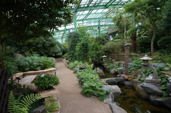 Cheongju, South Korea: 수목원 내 식물원