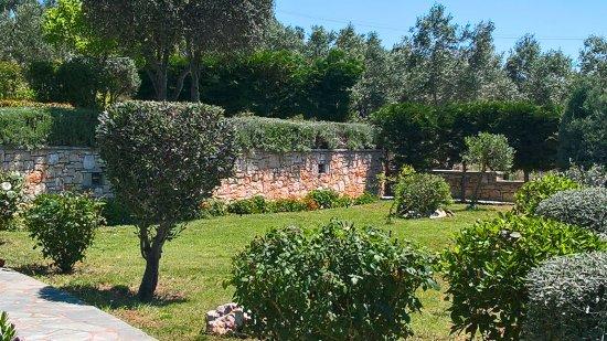 Villa Mirothea: Garden area