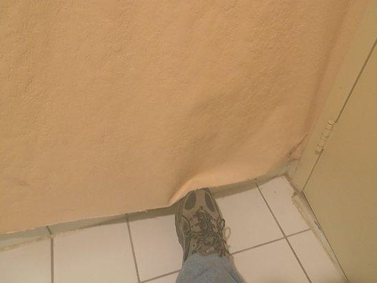 Ada, OK: Wallpaper coming off!!