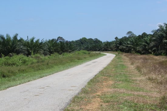 Kuantan District, Malezya: Camino de acceso