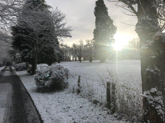 Mellington, UK: Snowy Driveway