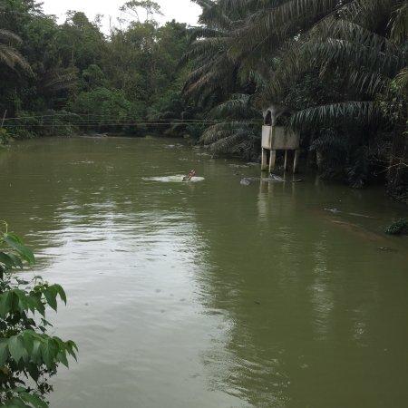 Jong's Crocodile Farm & Zoo : photo4.jpg