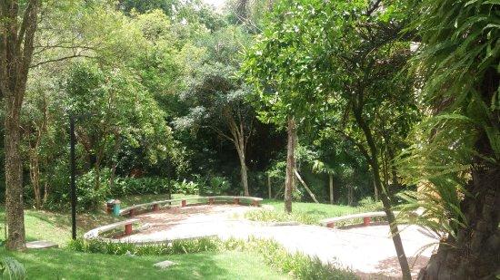 Parque dos Rosa