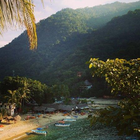 Boca de Tomatlan, Meksiko: IMG_20180108_220518_334_large.jpg