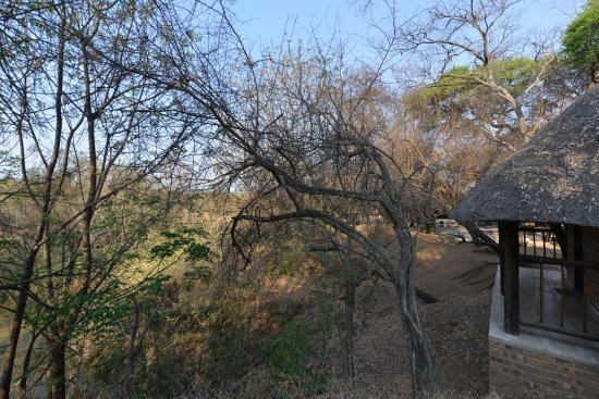 Limpopo Province, South Africa: Room 5 view