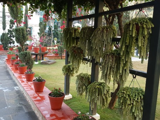 Kathmandu Guest House: 20180108_090430_large.jpg