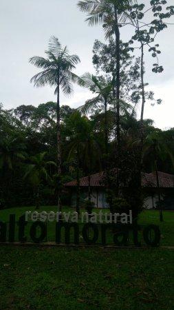 State of Parana: IMG_20180116_150817_large.jpg