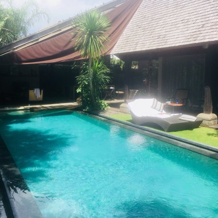 Pool Picture Of Ametis Villa Bali Canggu Tripadvisor