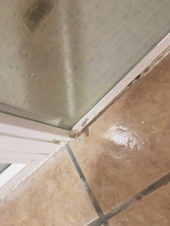 Apartamentos Aguamarina Golf: bottom of shower door (stinking)