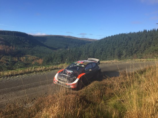 Llanbrynmair, UK: For one day only, Wales Rally GB descends on the Hafren Forest in October!
