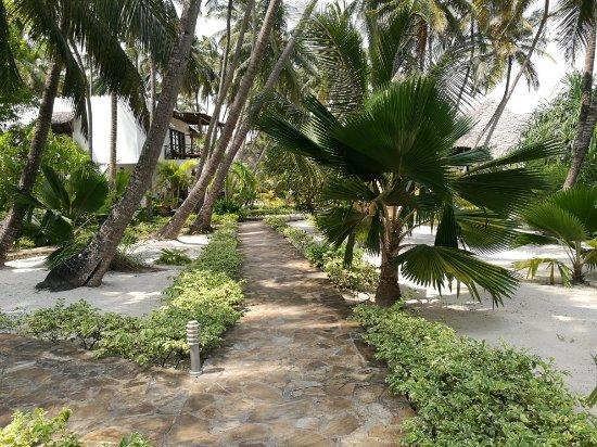 Next Paradise Boutique Resort: IMG_20180110_134650_large.jpg