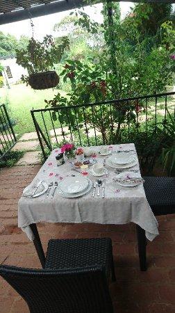 Plumbago Guest House: DSC_1528_large.jpg