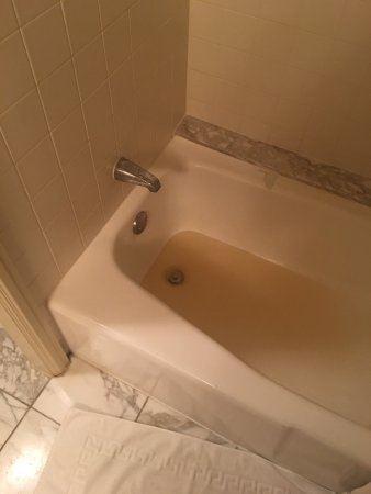 Omni Mandalay Hotel at Las Colinas: Brown water coming out of the shower tub