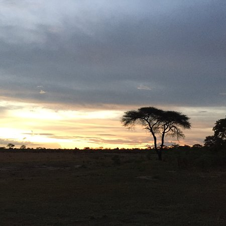 Elephant's Eye, Hwange: photo1.jpg