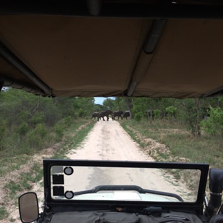 Elephant's Eye, Hwange: photo9.jpg