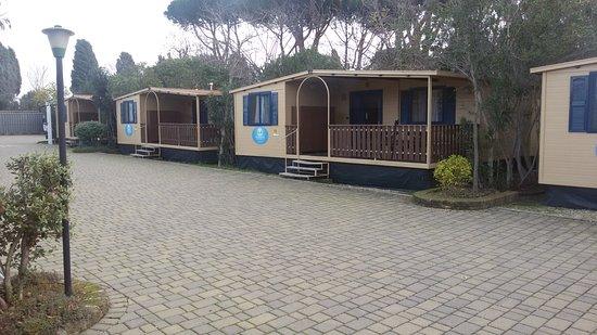 Imagen de Camping Village Roma