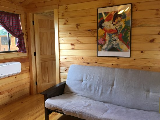 Richfield Springs, NY: Futon in living area folds out to a double bed